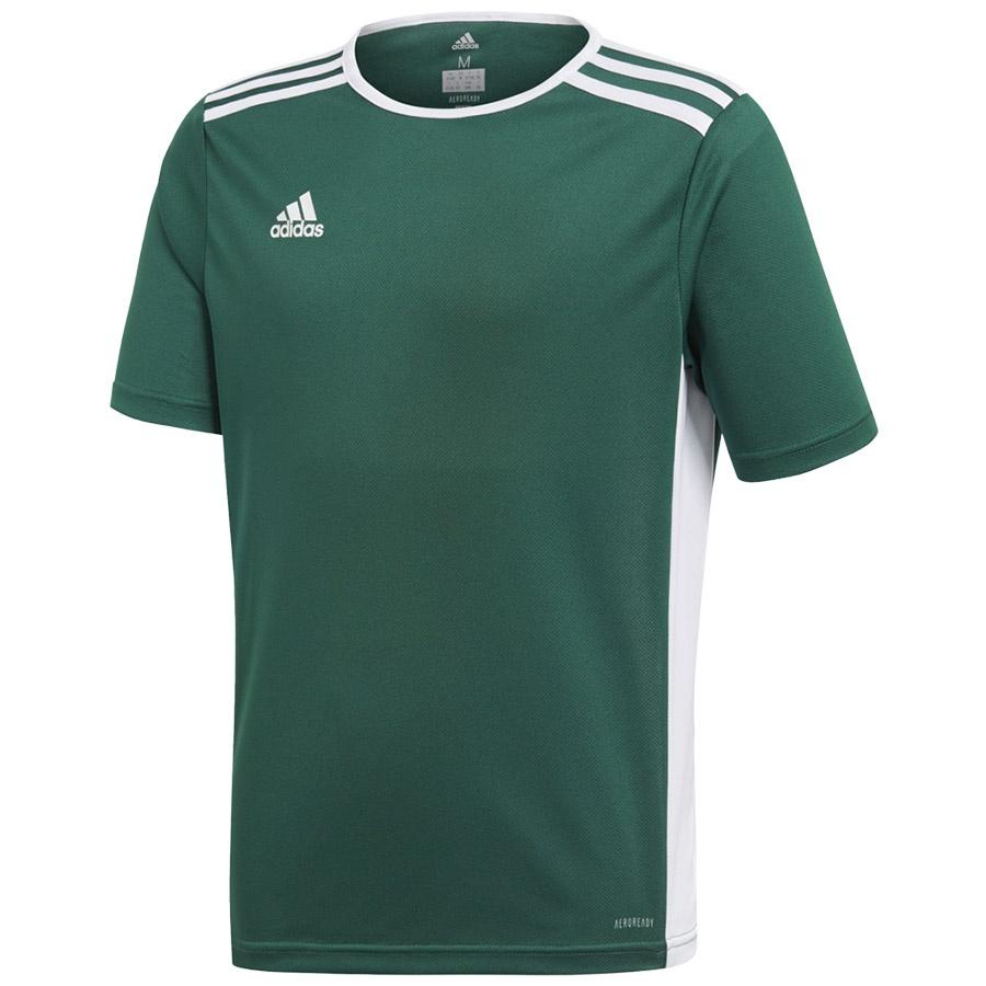 Koszulka adidas Entrada 18 JSY Y CE9563