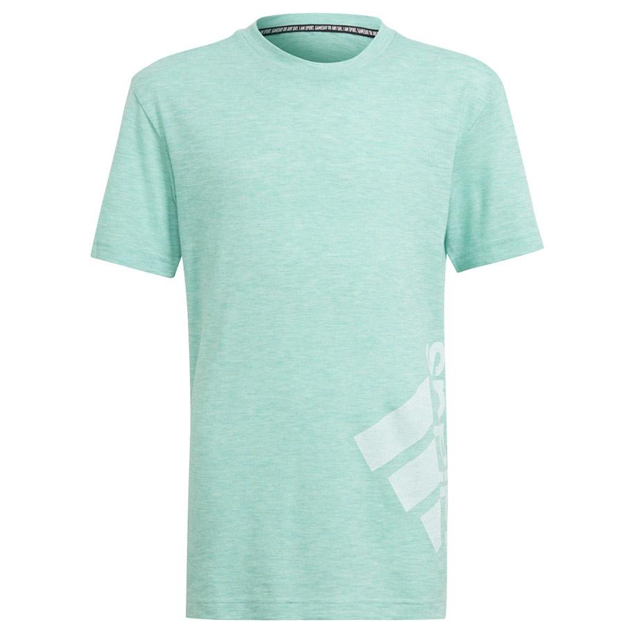Koszulka adidas B SUM Tee GJ6661
