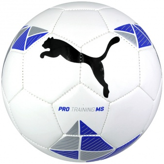 Piłka Puma Pro Training MS