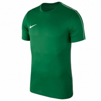 Koszulka Nike M NK Dry Park 18  SS Top AA2046 302