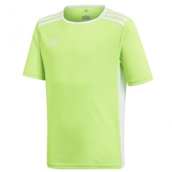 Koszulka adidas Entrada 18 JSY Y CE9755
