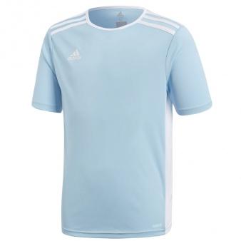 Koszulka adidas Entrada 18 JSY Y CF1045