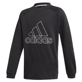 Bluza adidas B TR SW CREW GD9195