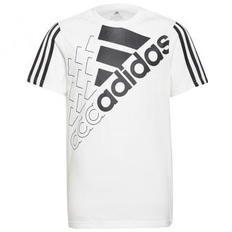 Koszulka adidas Boys Essentials Logo Tee 1 GS2191