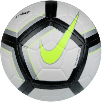 Piłka Nike Team Strike Football SC3176 102